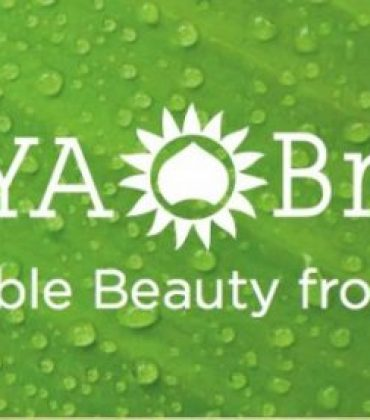 surya-brasil-logo
